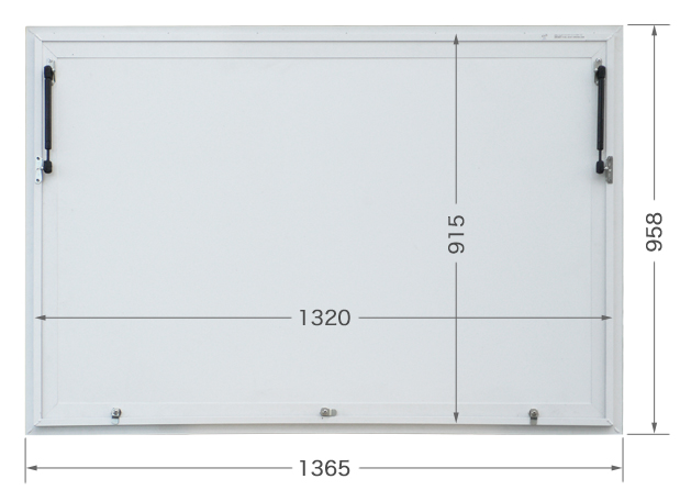 0250BAG5236